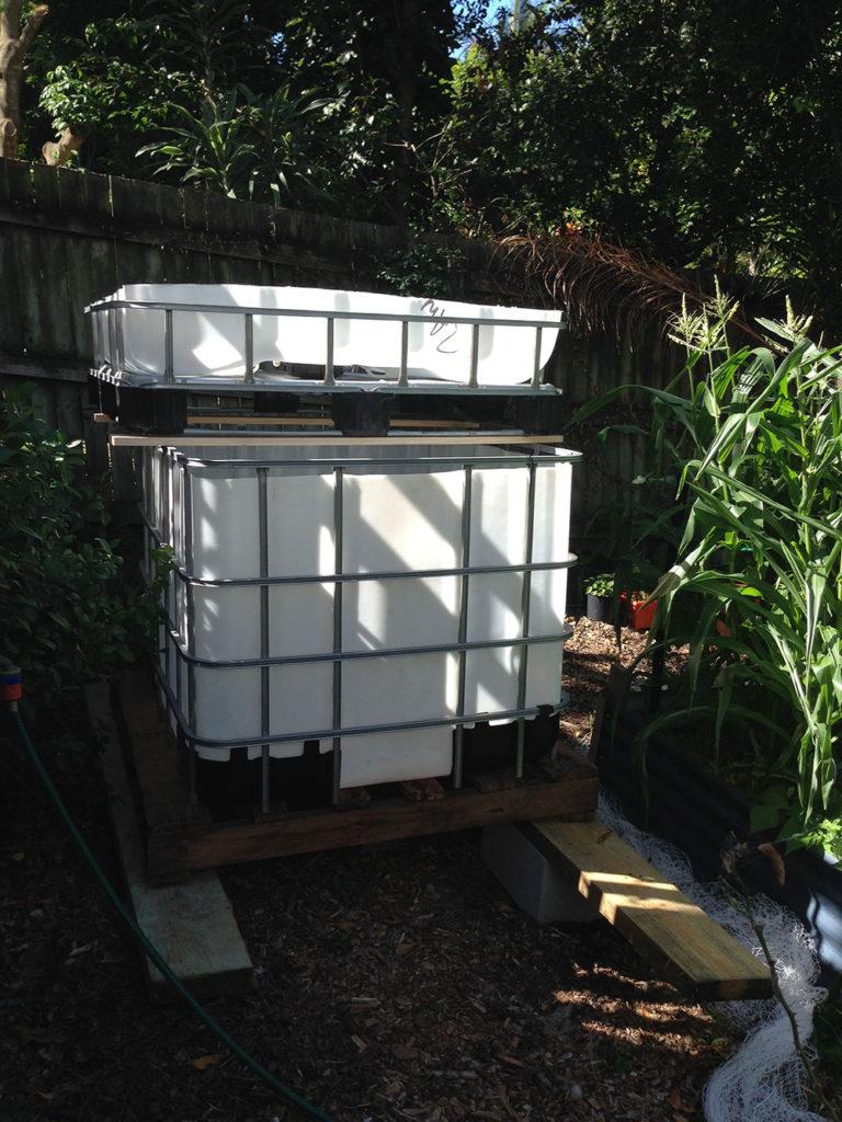 Our New Aquaponics System