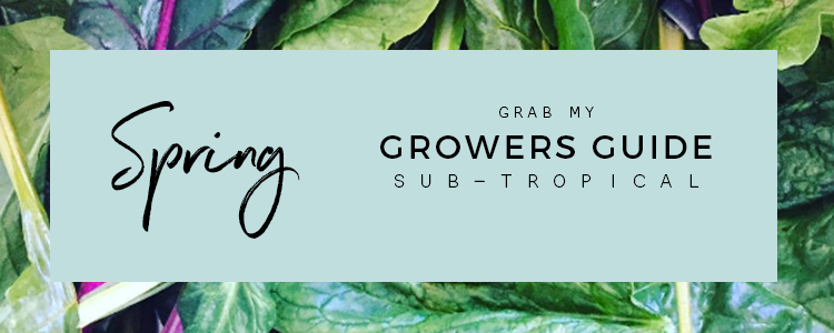 Spring Sub-tropical Growers Guide