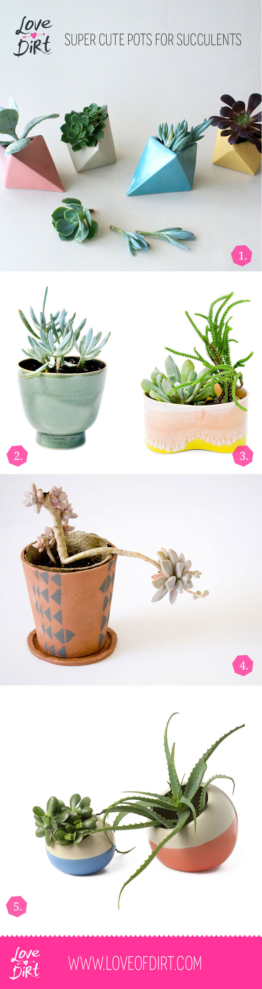 Super cute pots for succulents