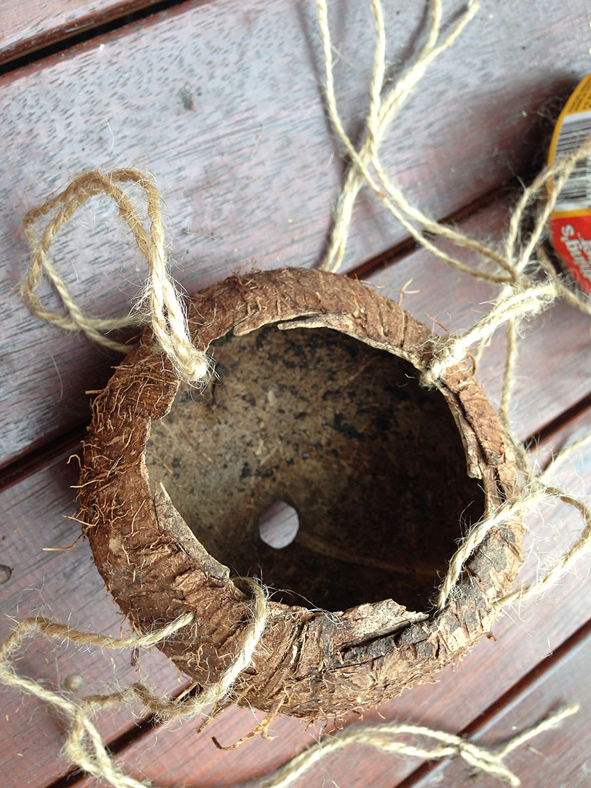 upcycled coconut strung out