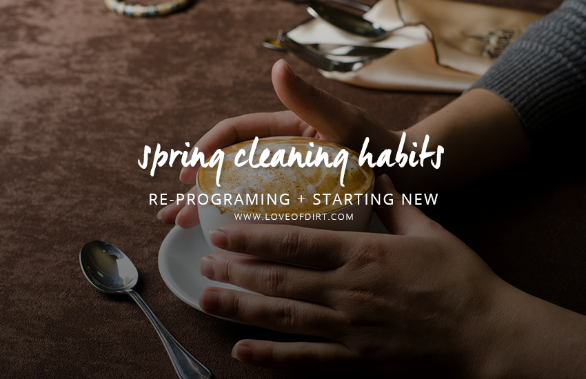 Spring Cleaning Habits