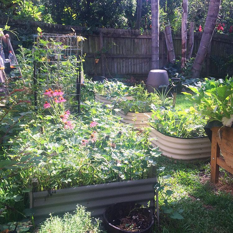 vege-gardens-renting-last-hurrah