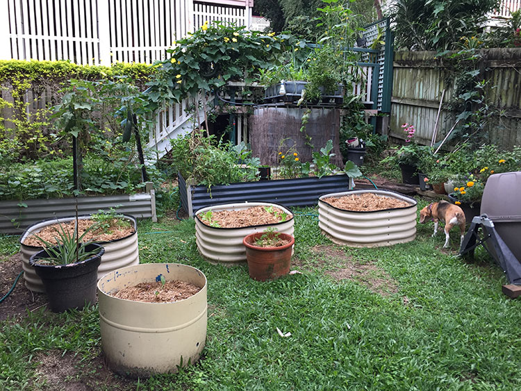 Gardens while renting