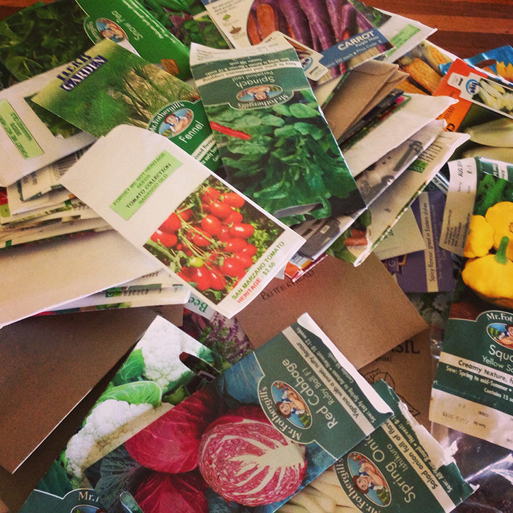 Seed Collections AKA Hoarding