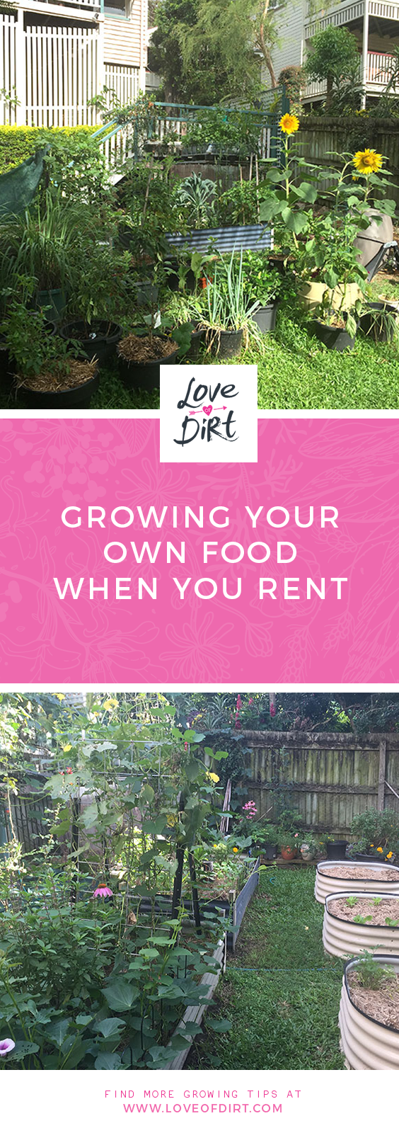 Growing your own food when living in a rental
