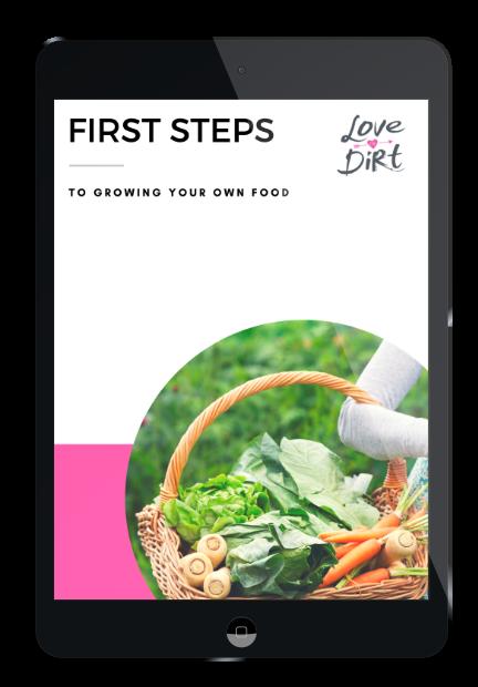 first-steps-ipad