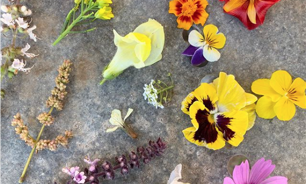 Flowers for your veggie patch