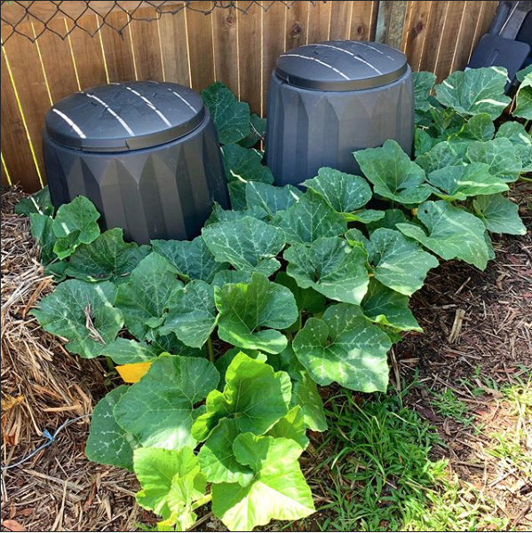 How we Compost in the suburbs