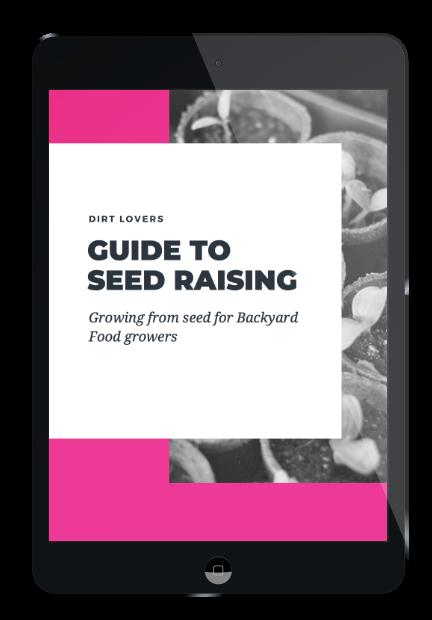 ipad-seed-raising