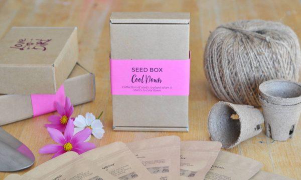 cool-down-seed-box