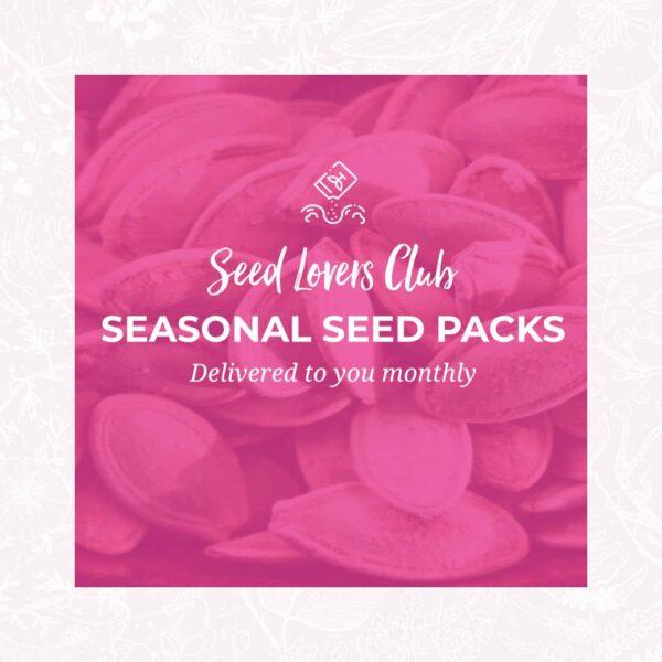 Seed Lovers Club