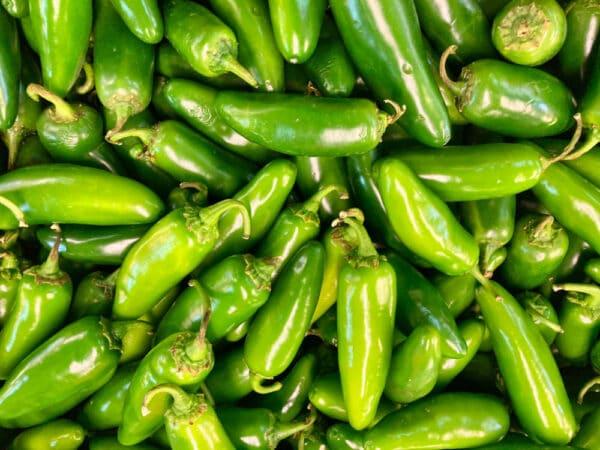 Jalapeno Chilli Seeds