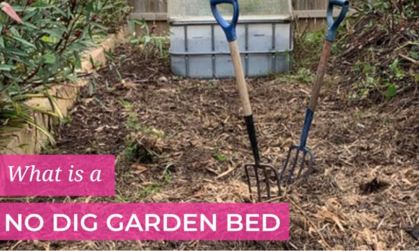 What is a no dig garden bed